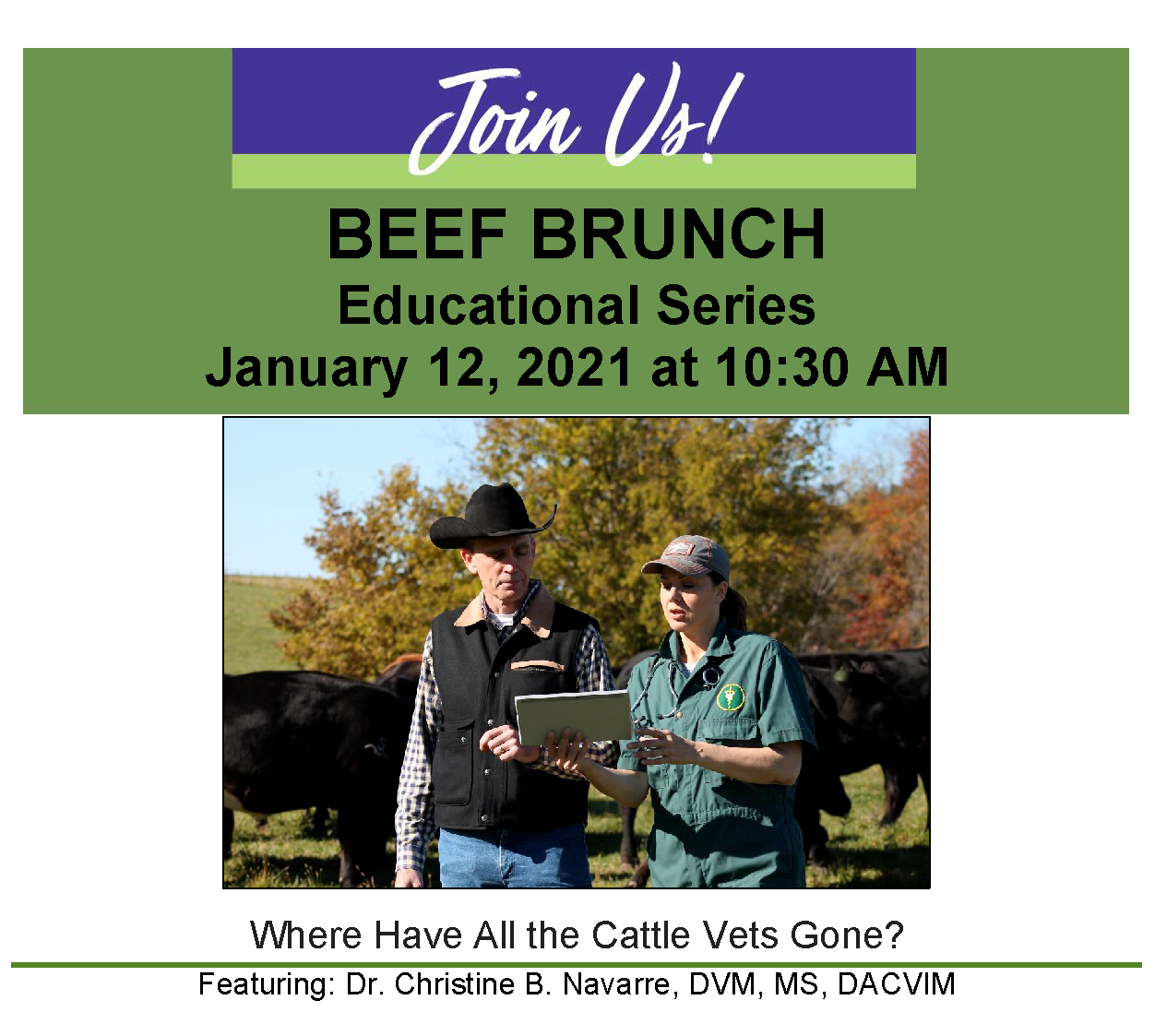 Beef Brunch Flyer - Where have all the cattle vets gone - January 2021 - Website Imagepng