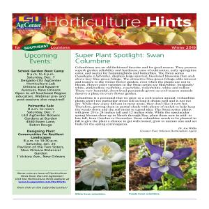 Hort Hints SE region winter 2019pdf thumbnail