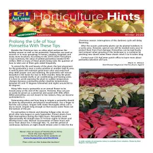 Horticulture Hints Winter 2020 Northwestpdf thumbnail