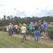 Tea production, processing workshops conducted for prospective Louisiana growers