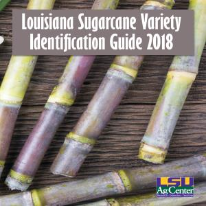 Louisiana Sugarcane Variety Identification Guide 2018