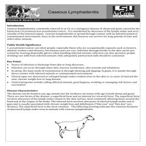 Caseous Lymphadenitis in Goats and Sheep
