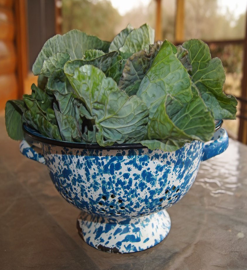 Collard greens in a bowl.