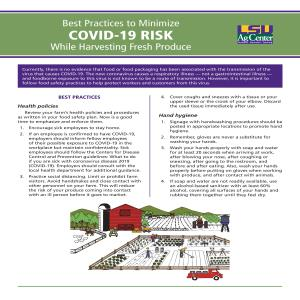 ​Best Practices to Minimize COVID-19 Risk While Harvesting Fresh Produce