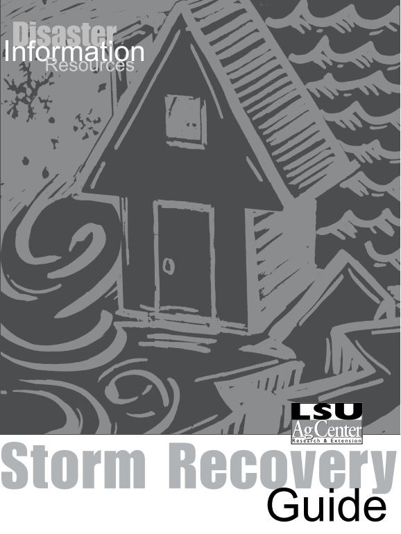 storm recovery guide picturejpg