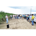 Sugarcane varieties, management strategies discussed at field days