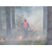 Prescribed Burning Workshop May 16th-18th, 2017