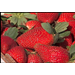 Consumers can expect to see more strawberries