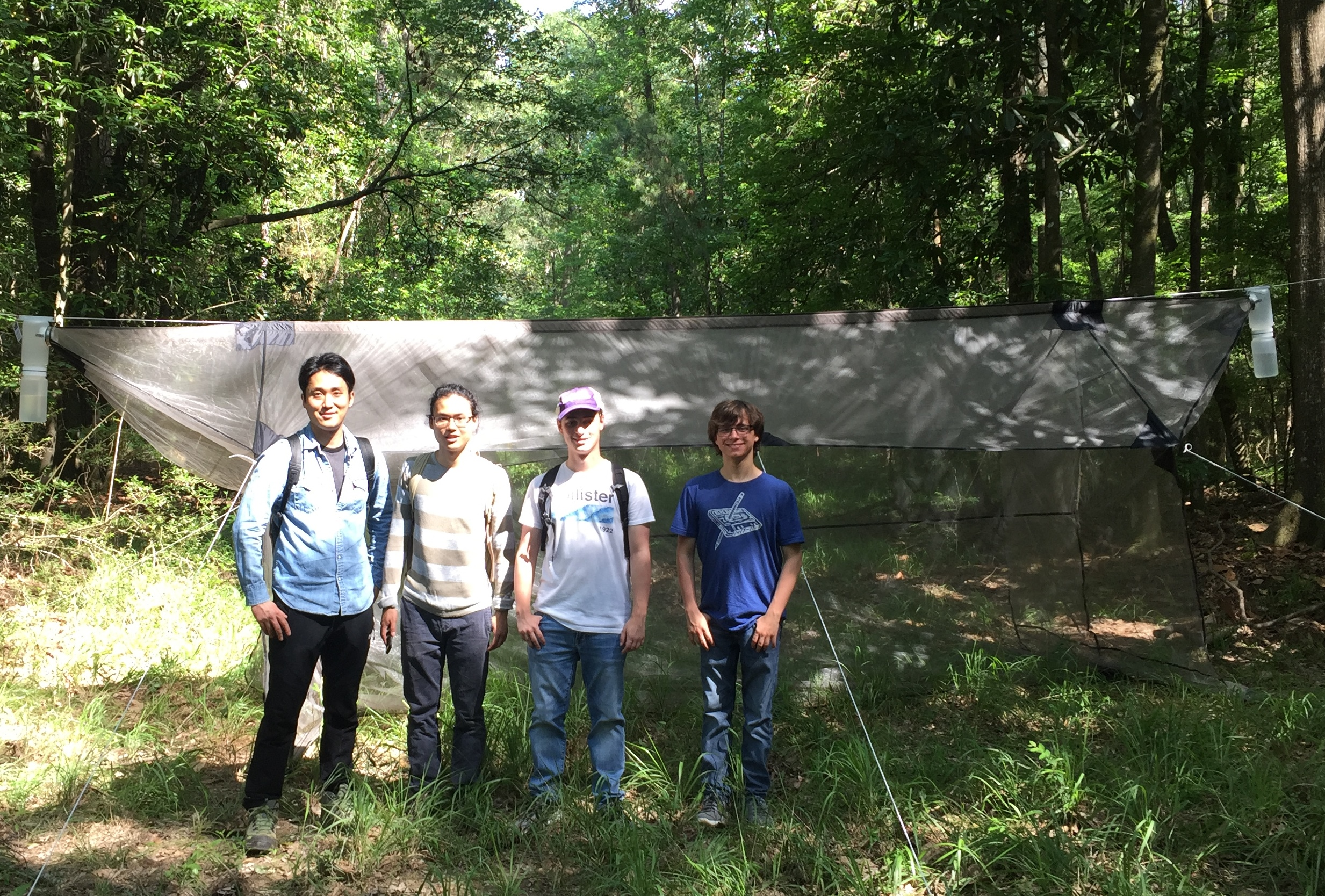Four students with insect trap.JPG thumbnail