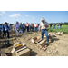 Sweet Potato Field Day Summary 2019