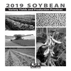 2019 Soybean Variety Yields and Production Practices