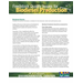 Feedstock Quality Issues for Biodiesel Production