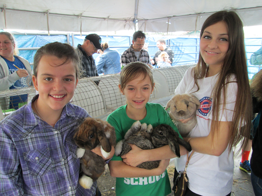 Picture of 4-H'ers holding rabbits.