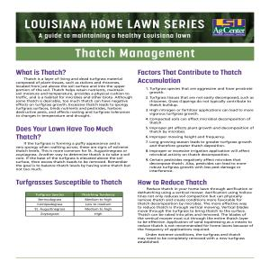 Louisiana Home Lawn Series: ​Thatch Management