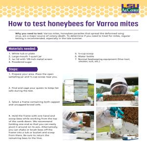 How to test honeybees for Varroa mites