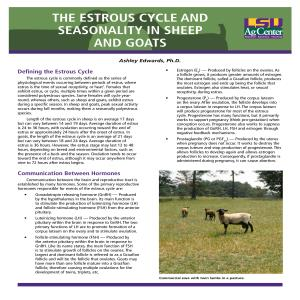 The Estrous Cycle and Seasonality in Sheep and Goats