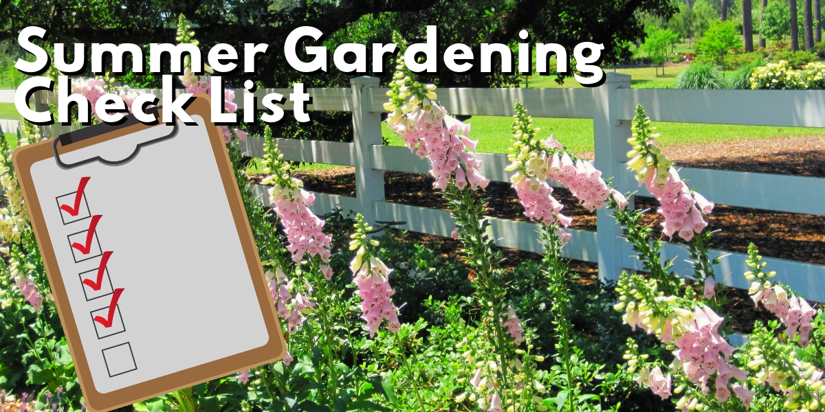 Summer Gardening Check list graphic.jpg thumbnail