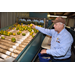 Citrus growers keep going despite weather, market setbacks