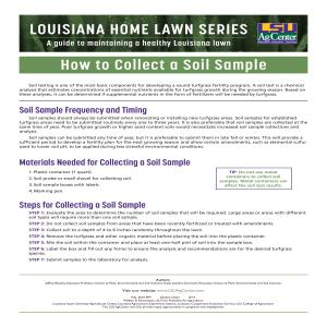 Louisiana Home Lawn Series: How to Collect a Soil Sample