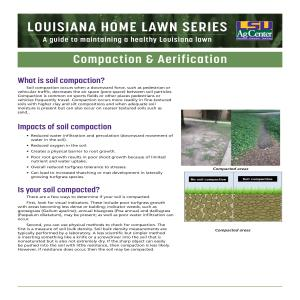 Louisiana Home Lawn Series: ​Compaction & Aerification