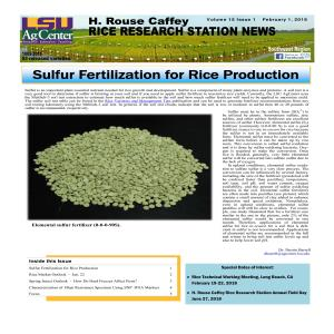 2018 H. Rouse Caffey Rice Research Station Newsletters